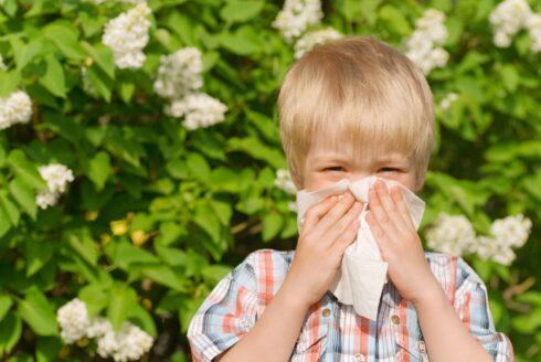 Alergia na vzostupe – hrozí nám nová civilizačná choroba?