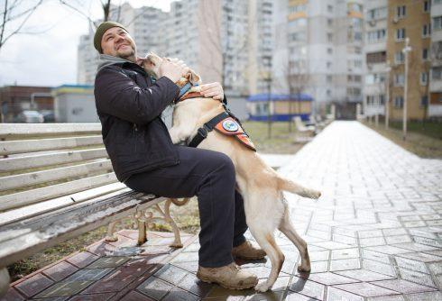 Hero's Companion: Ako psy na Ukrajine pomáhajú obetiam vojny?
